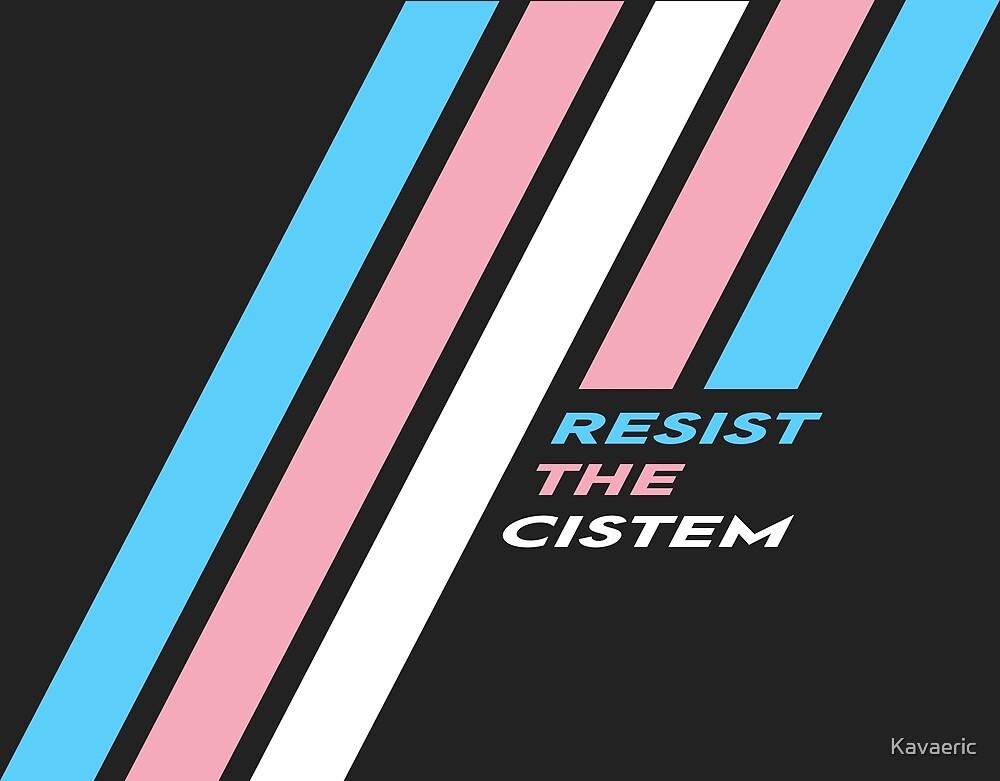 Pride Stripe: Resist The Cistem by Kavaeric