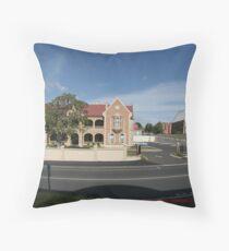 Fisheye Test (Eos 20d) Throw Pillow