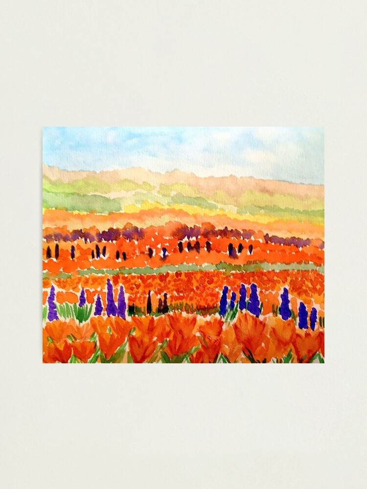 Alternate view of California Poppies Photographic Print