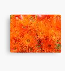 Orange Gums-(Floral Macro) Canvas Print