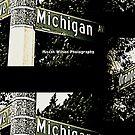 Orange Grove & Michigan Avenue1 SIGNATURE Pasadena California by Mistah Wilson Photography by MistahWilson