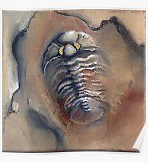 Goldeneye Trilobite Poster