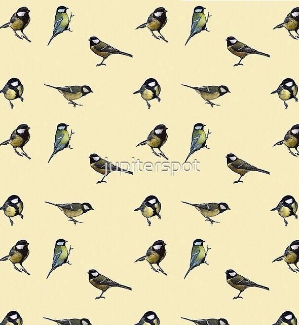 Birds  by jupiterspot