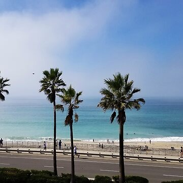 CARLSBAD CALIFORNIA JUST ANOTHER DAY IN PARADISE by Tammera