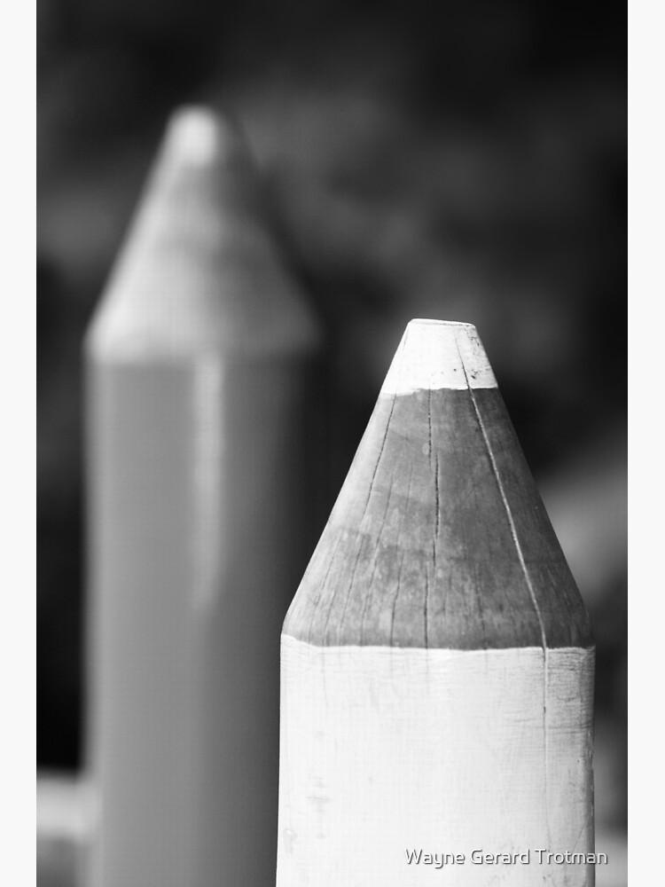 Black & White Pencils by redmoondragon