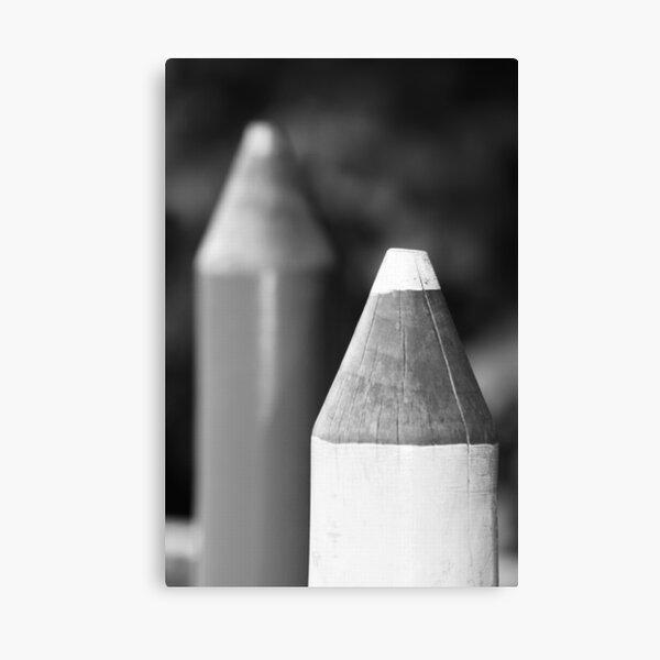 Black & White Pencils Canvas Print