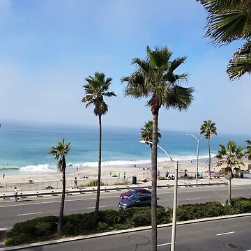 CARLSBAD CALIFORNIA JUST ANOTHER DAY IN PARADISE 2 by Tammera