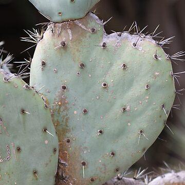 Love Cactus by jaxfae