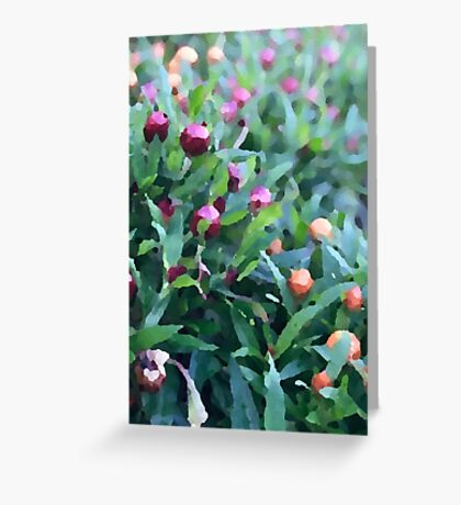 Alexandra Gardens Greeting Card