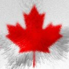 Extruded Flag of Canada by Dr-Pen