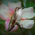 Hummingbird in the Rose Garden by Bonnie T.  Barry