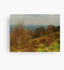 From Otley Chevin Canvas Print
