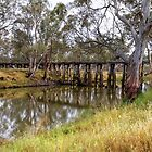 The Old Railway Bridge at Quantong, Victoria by Christine Smith