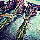 Bundling Lavender by EvePenman