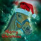 Horse Christmas card by Brian Tarr
