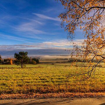 October morning 11 by wekegene