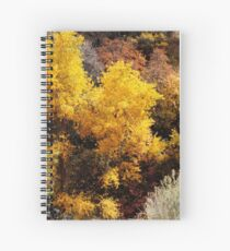 Valley of Gold Spiral Notebook