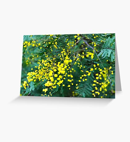 Wattle Fever Greeting Card