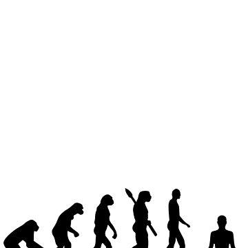 Yoga Evolution by overstyle