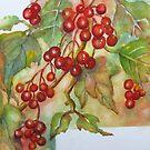 Kalyna Berries 2 von bevmorgan