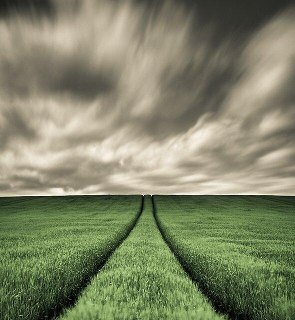 Tracks by David Bowman