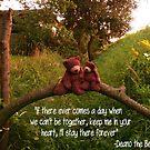 Deano Bears on bridge by Dean Harkness