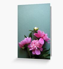 pink peony blooms on green background Greeting Card