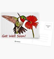 Humming Bird - Get Well Soon Card  Postcards