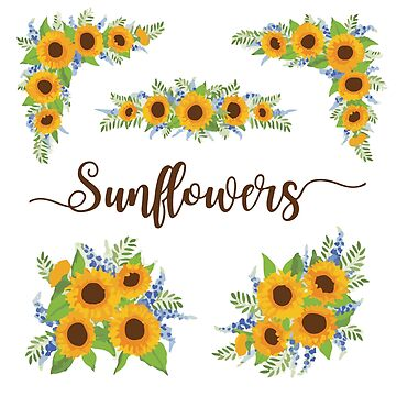 Sunflower MULTI PACK by TaylorBrew
