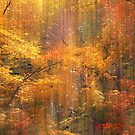 Autumn Bling by Jessica Jenney