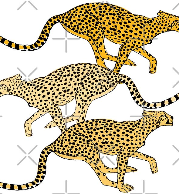 Fast Cheetah by Lorloves Design by LorlovesDesign