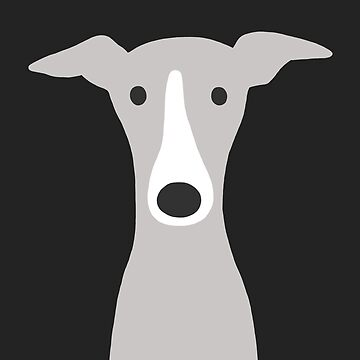 Greyhound / Italian Greyhound Cute Dog  by ShortCoffee