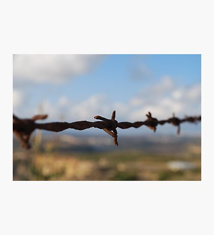 On the Wire Photographic Print