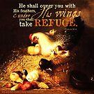 Psalms 91:4 Verse Chicken Print by ScripturePics