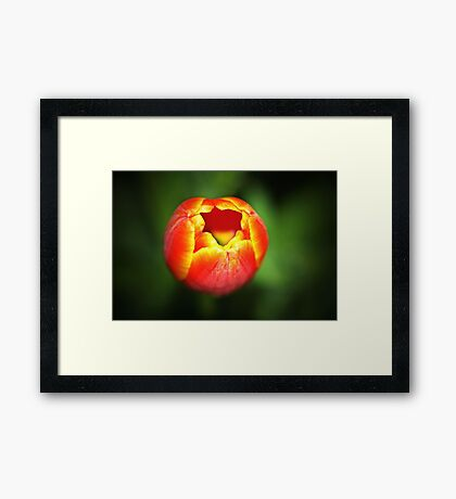 I'm Ready... Are You? Framed Print