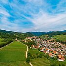Green vineyards aerial view from drone. Wide panoramic photography by Alexander Sorokopud