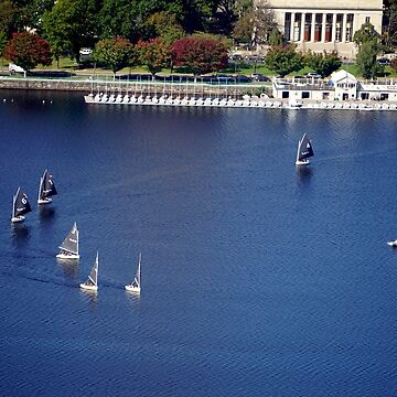 Sailing school on the Charles River by CiaoBella