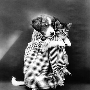 Puppy Holding A Kitten - The Nurse - Harry Whittier Frees by warishellstore