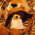 Deano Bears Lions and Tigers by Dean Harkness