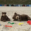 Deano Bears at the seaside by Dean Harkness