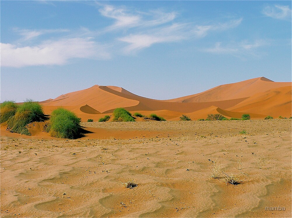 desert bushes by mamba