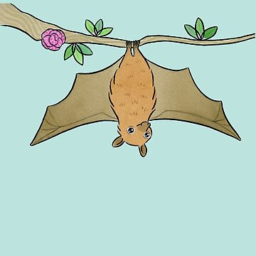 Flying Fox Flapping - Fruit Bat by zoel