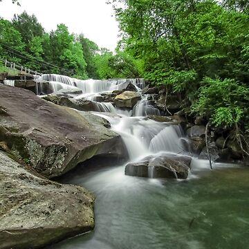 Grassy Falls  by PaulLu