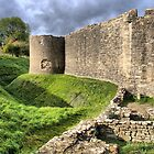 Farleigh Hungerford Castle  ( 5 ) by Larry Davis