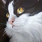 Black and White Tuxedo Cat by RJKpoyp