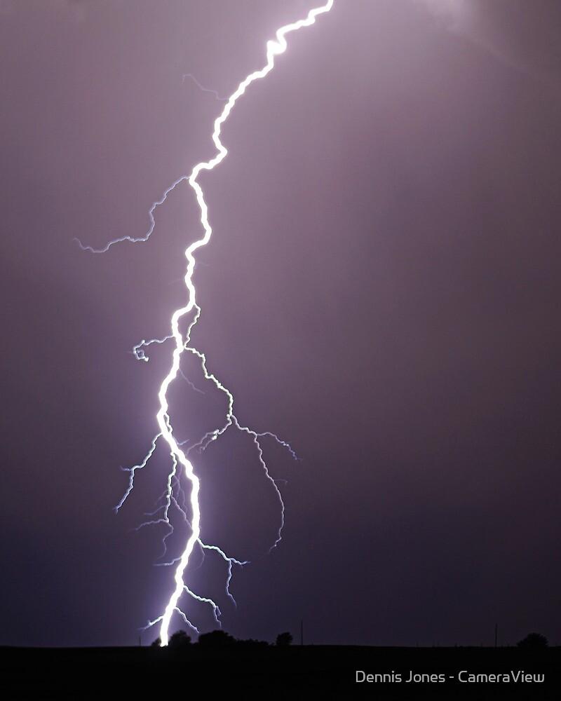 Lightning Roots by Dennis Jones - CameraView