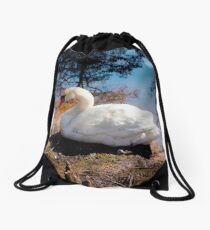Swan Lake Beauty Drawstring Bag