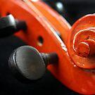 Violin Pegs by Sophie Matthews