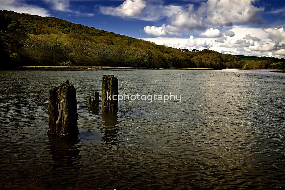 Poles Apart by Richard Hamilton-Veal