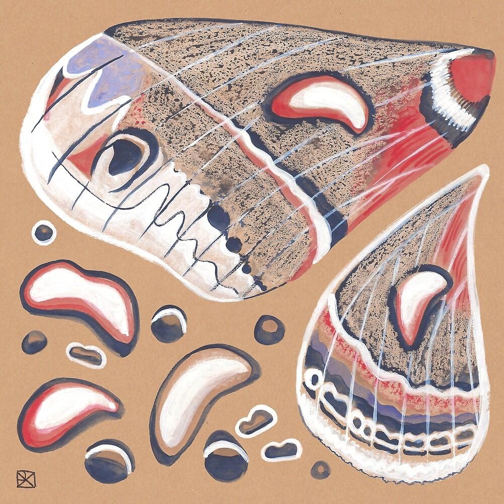 Cecropia Moth Wings by Evvie Marin